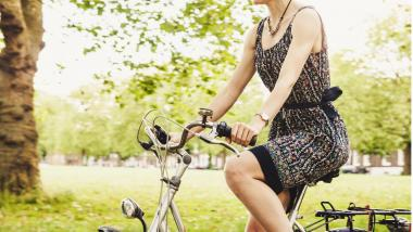 Pilares para un envejecimiento saludable - Investigación, Sociedad