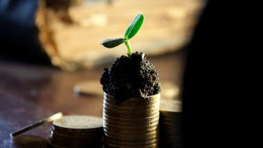 Cómo sacar provecho del envejecimiento - Economía, Actualidad