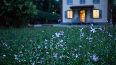 Un 99 % personas elegiría vivir en hogar y no en residencia, según encuesta - Actualidad, Investigación