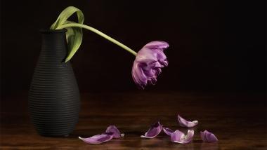 Depressão: Atento aos sinais - Salud, Envejecimiento