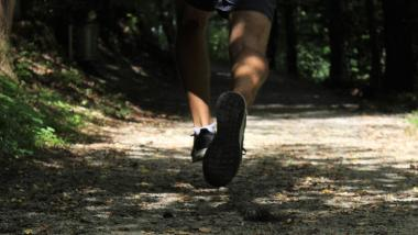 Health effects of physical activity - Salud, Investigación